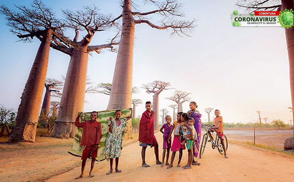 Madagaskar sagt Nein zur Impfung und setzt auf traditionelle Heilmittel